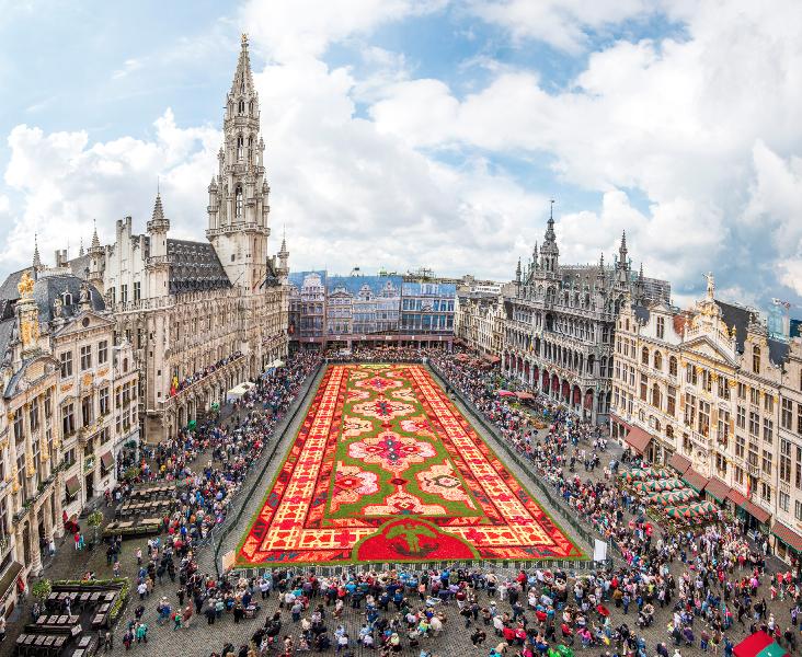 Begonias_Bruxelas_6